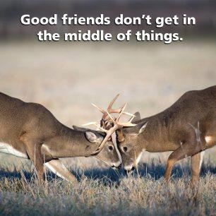 bucks_middle