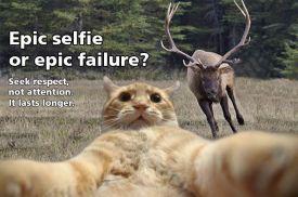 selfie-cat-elk-respect