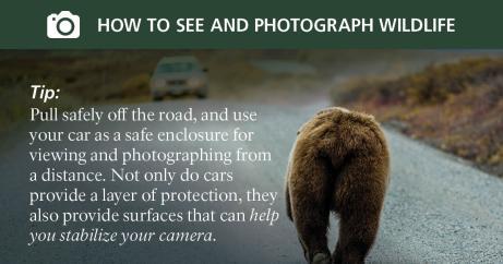 social_media_photo_tips5