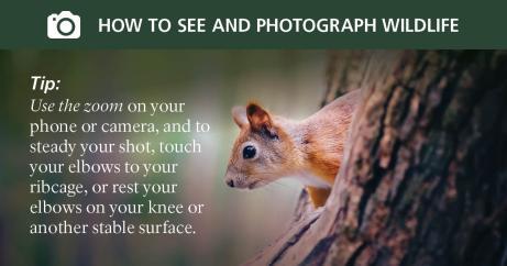 social_media_photo_tips6