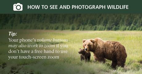 social_media_photo_tips7